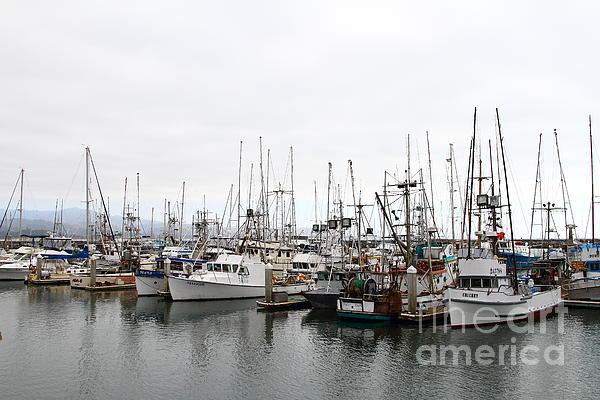 Transportation Photograph - Fishing Boats In Pillar Point Harbor At Half Moon Bay California . 7d8196 by Wingsdomain Art and Photography