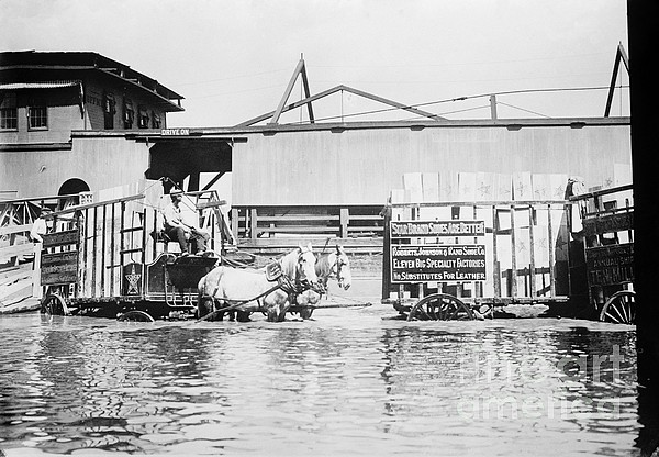 1900s Photograph - Flooding On The Mississippi River, 1909 by Library of Congress