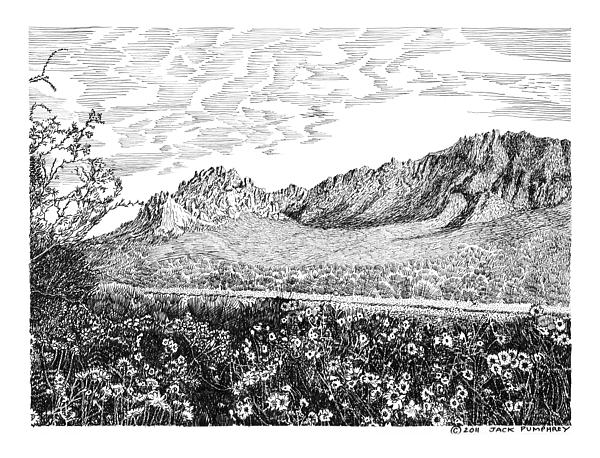 Florida Mountains And Poppies Drawing by Jack Pumphrey