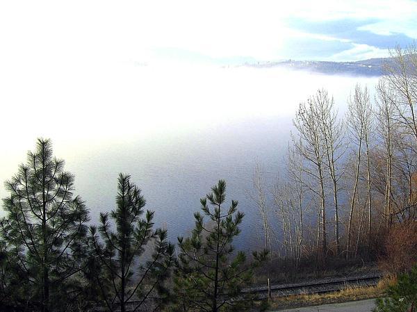 Fog Photograph - Fog On Wood Lake by Will Borden