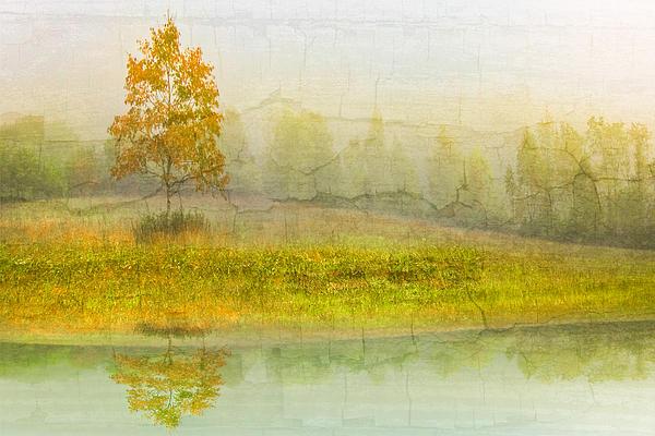 Appalachia Photograph - Foggy Meadow by Debra and Dave Vanderlaan