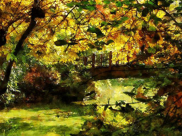 Foot Bridge Photograph - Foot Bridge by Susan Savad