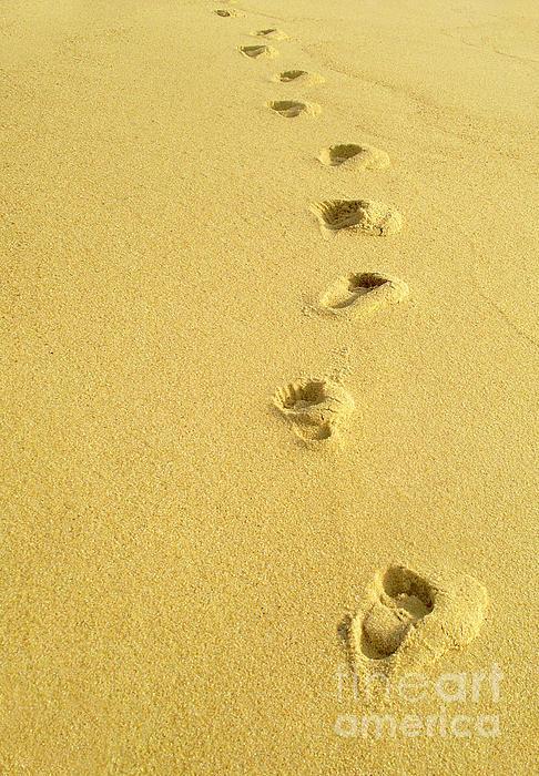 Beach Photograph - Foot Prints by Carlos Caetano