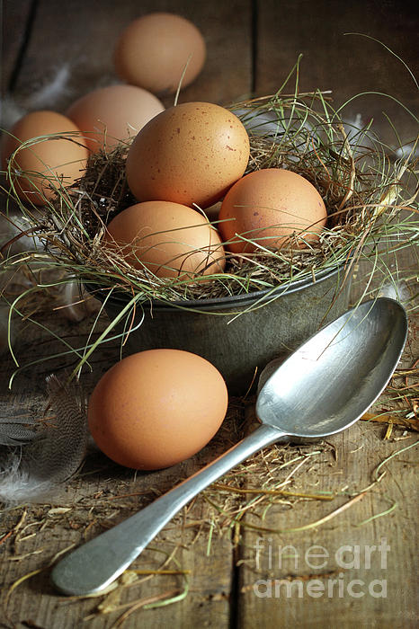 Background Photograph - Fresh Brown Eggs In Old Tin Container With Spoon  by Sandra Cunningham