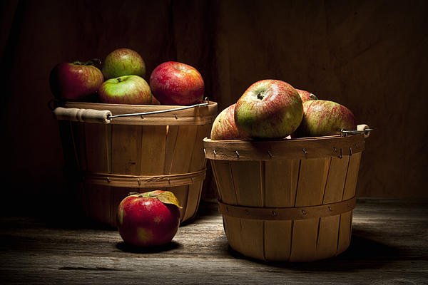 Apple Photograph - Fresh From The Orchard IIi by Tom Mc Nemar