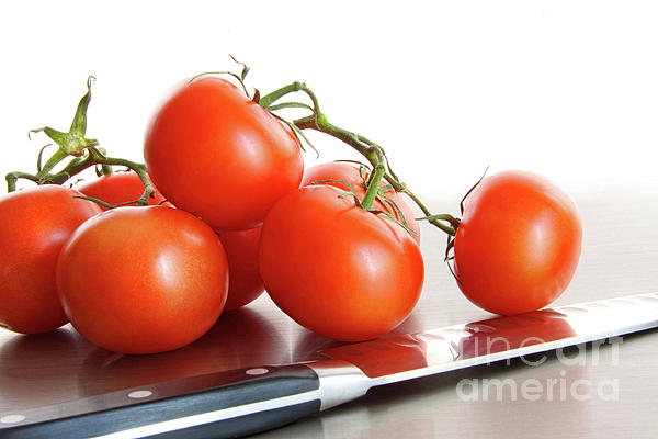 Agriculture Photograph - Fresh Ripe Tomatoes On Stainless Steel Counter by Sandra Cunningham