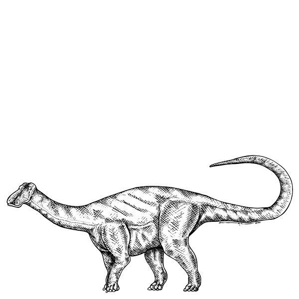 Cartoon Drawing - Friendlysaurs - Dinosaur by Karl Addison