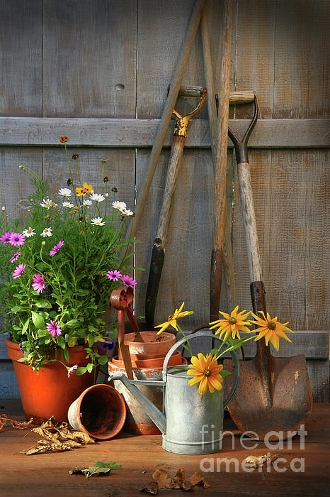 Activity Photograph - Garden Shed With Tools And Pots  by Sandra Cunningham