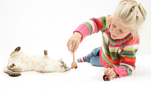 Animal Photograph - Girl Playing With Cat by Mark Taylor