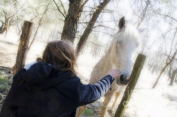 People Photograph - Girl Stroking Camargue Horse At Fence by Sami Sarkis
