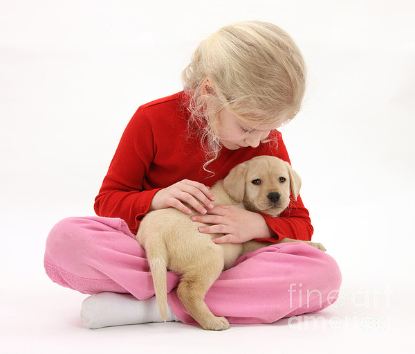 Animal Photograph - Girl With Puppy by Mark Taylor