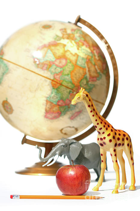 Africa Photograph - Globe With Toys Animals On White by Sandra Cunningham