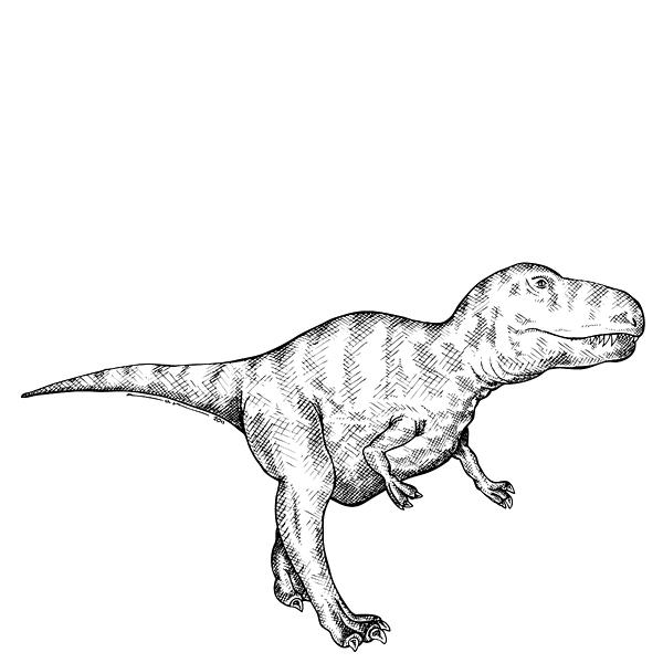 Cartoon Drawing - Gorgosaurus - Dinosaur by Karl Addison