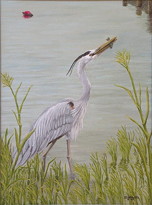 Wildlife Painting - Great Blue Heron by Jim Ziemer