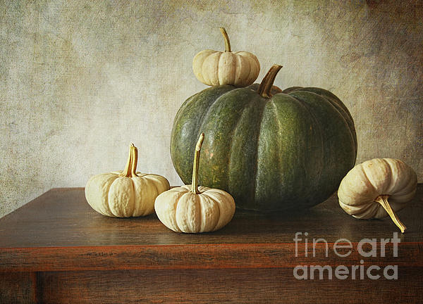Agricultural Photograph - Green Pumpkin And Gourds On Table  by Sandra Cunningham