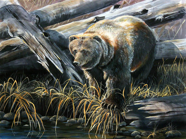 Grizzly Bear Art Painting - Grizzly Pond by Scott Thompson