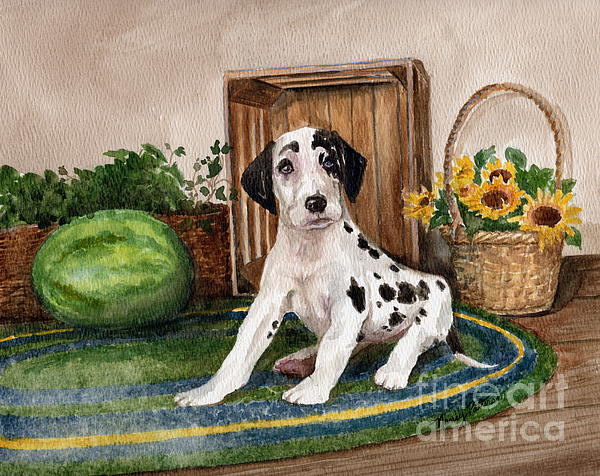Great Dane Painting - Growing Fast by Nancy Patterson