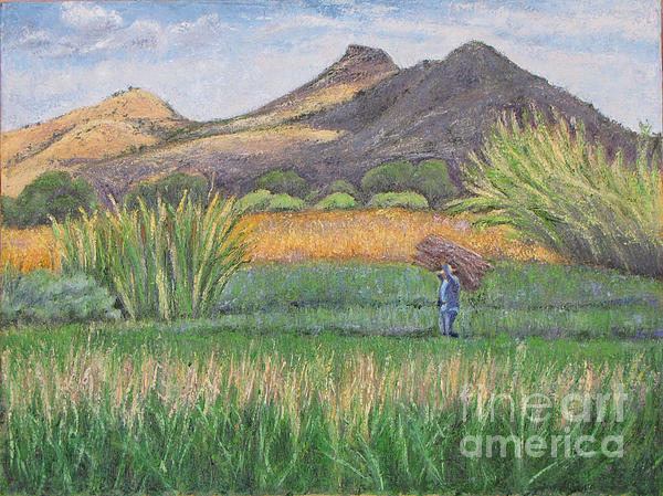 Harvest Painting - Harvesting In Yagul by Judith Zur