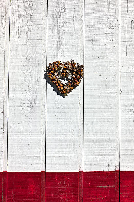 Heart Wreath Wood Wall Photograph - Heart Wreath On Wood Wall by Garry Gay