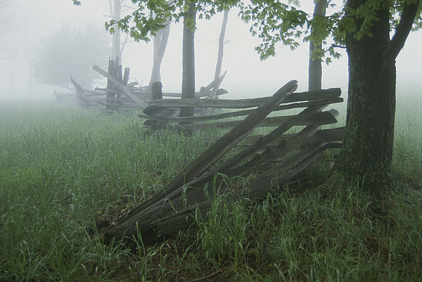 Natural Forces And Phenomena Photograph - Heavy Fog Hangs Over Split Rail Fences by Stephen St. John