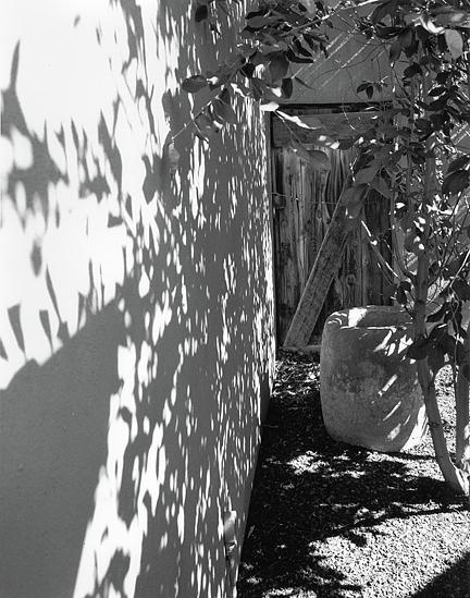 Shadows Photograph - Hidden Door by Allan McConnell