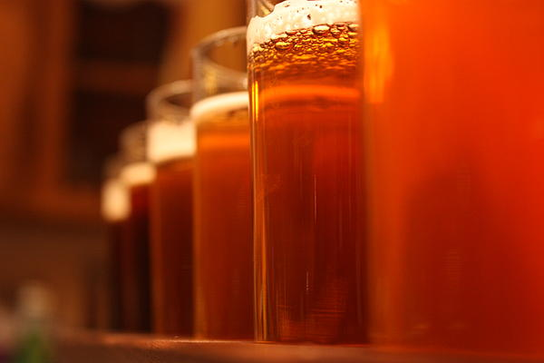 Beer Photograph - Homebrew Progression by Robert Rizzolo