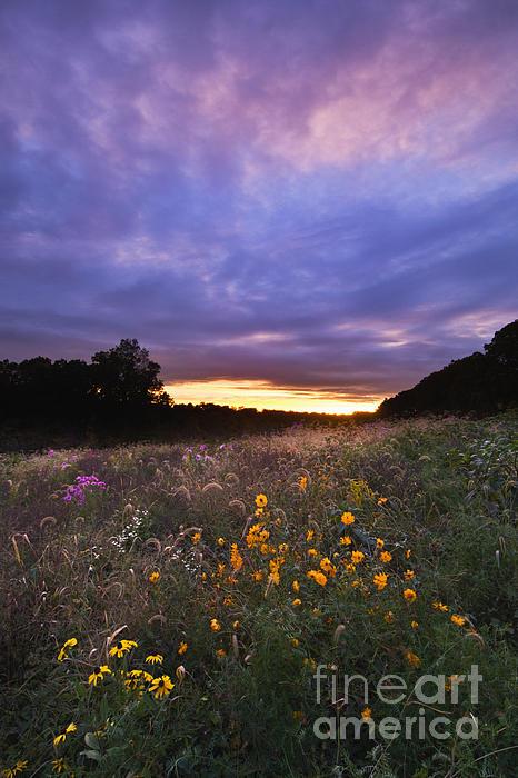 Sun Photograph - Hoosier Sunset - D007743 by Daniel Dempster