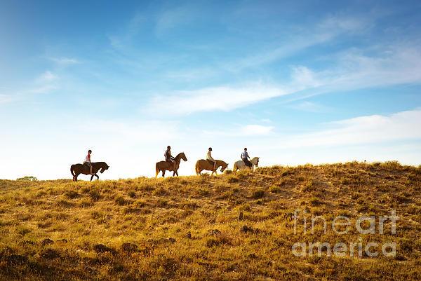 Animal Photograph - Horseback Riding by Carlos Caetano