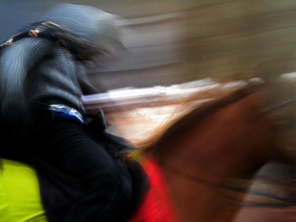 Colette Photograph - Horserider by Colette V Hera  Guggenheim