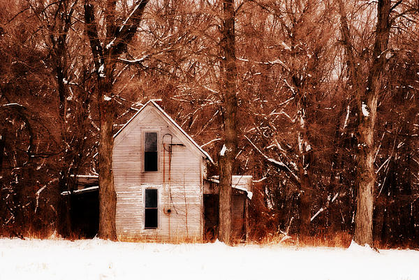 Brown Photograph - House In The Woods by Cheryl Helms