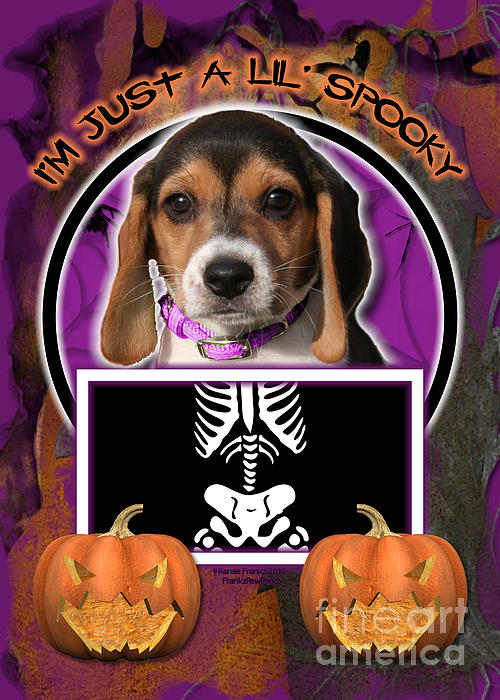 Beagle Digital Art - Im Just A Lil Spooky Beagle Puppy by Renae Laughner