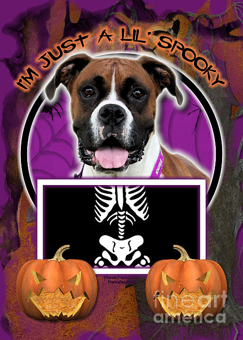 Boxer Digital Art - Im Just A Lil Spooky Boxer by Renae Laughner