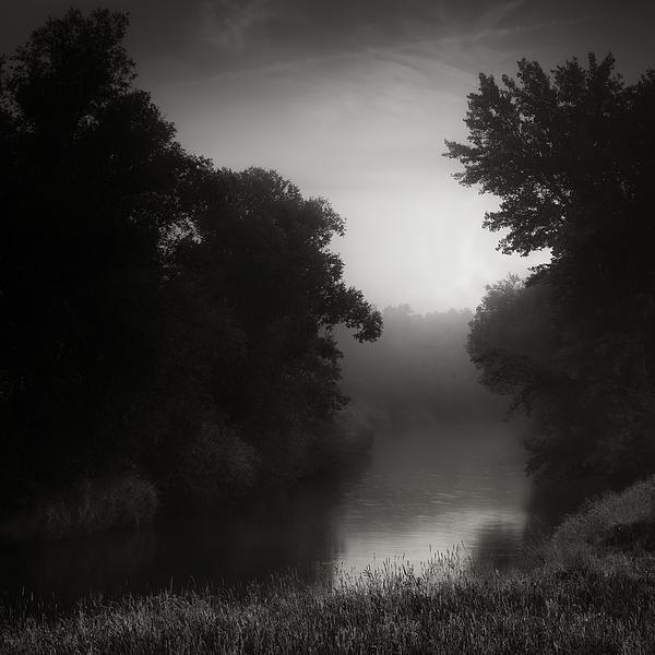 River Photograph - In Floodplain Forest by Jaromir Hron