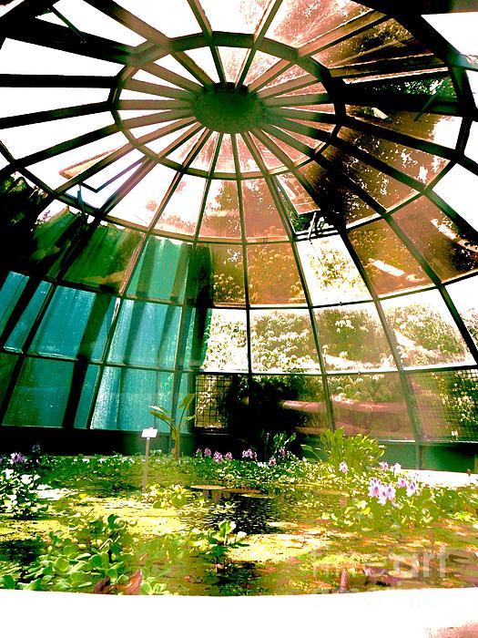Glass Photograph - In The Sauna by Mariann Makrai