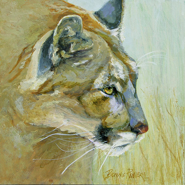 Cougar Painting - Intense Cougar by Bonnie Rinier