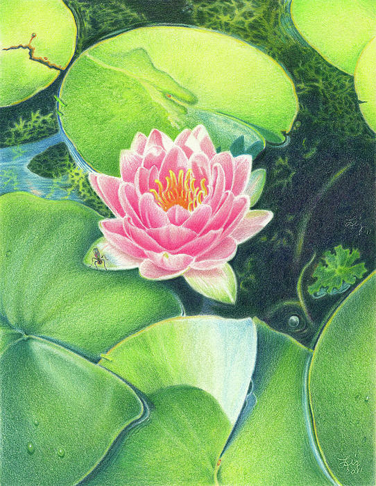 Flower Painting - Its Pink by Elizabeth Dobbs