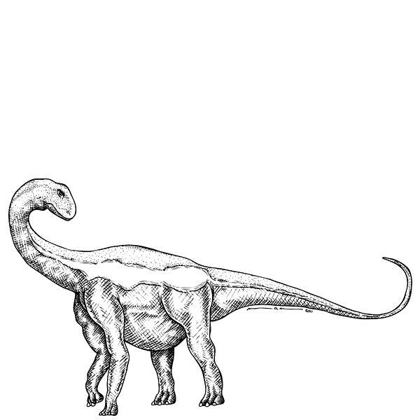 Cartoon Drawing - Jobaria - Dinosaur by Karl Addison