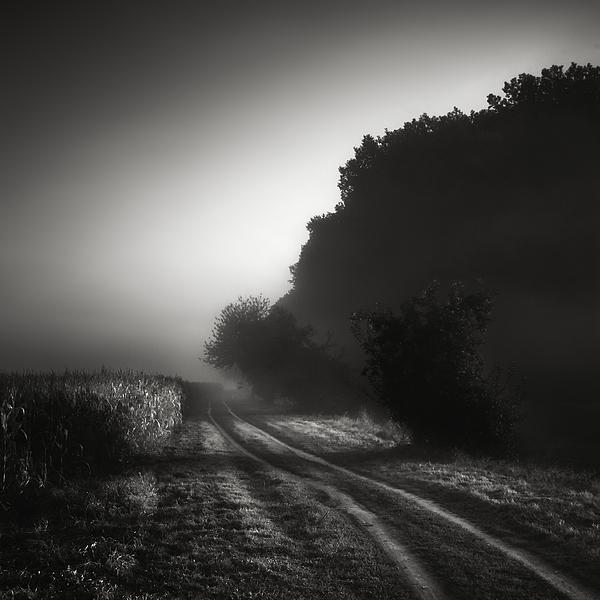 Summer Photograph - Journey Into The Unknown - Cesta Do Neznama by Jaromir Hron