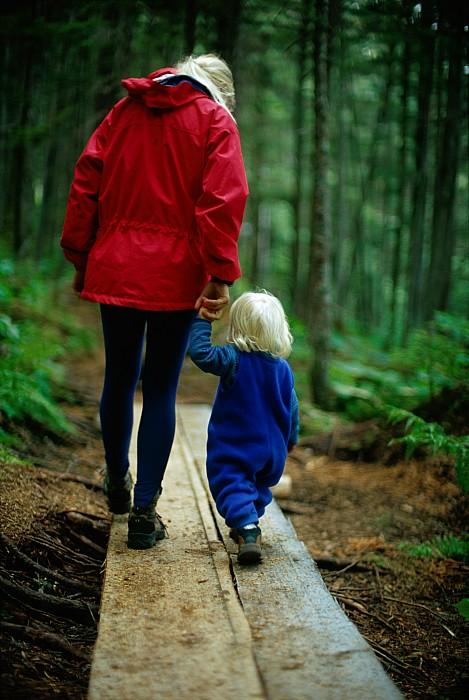 Ellie Photograph - Joy Tessman Walks Along by Barry Tessman
