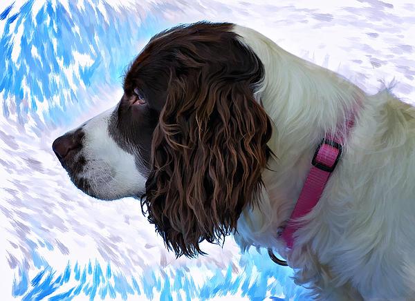 Dog Photograph - Kaya Paint Filter by Steve Harrington
