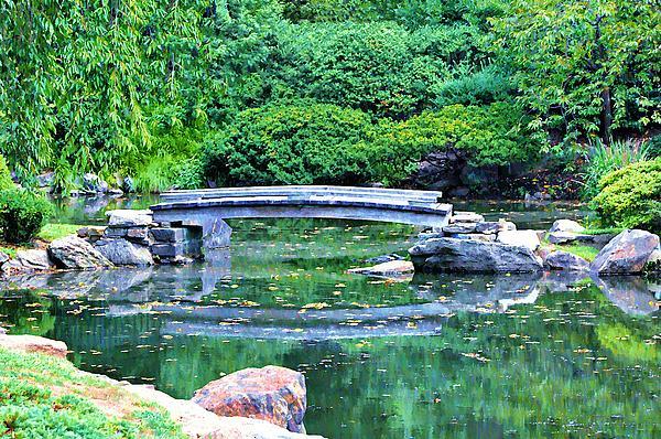 Koi Pond Photograph - Koi Pond Pondering - Japanese Garden by Bill Cannon