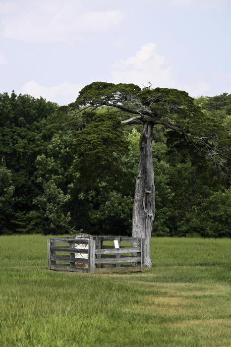 Appomattox Photograph - Lafayette Meeks Cemetery Appomattox Virginia by Teresa Mucha