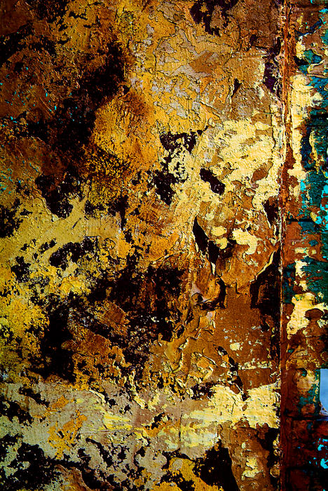 Old Paint Photograph - Layers Of Old Paint by Frank DiGiovanni