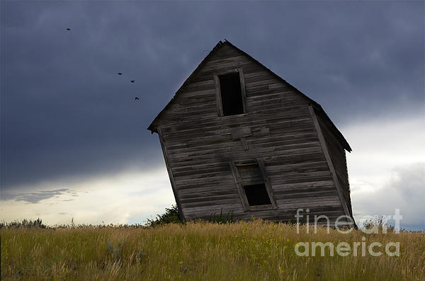 Homestead Photograph - Leaning A Little 2 by Bob Christopher