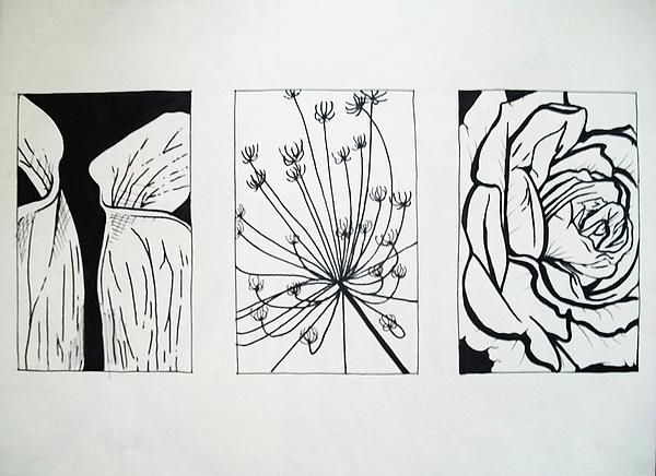 Composition Of Lines In Art : Line composition drawing by sarah lonthier