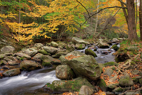 Great Smoky Mountains Photograph - Little River I by Charles Warren