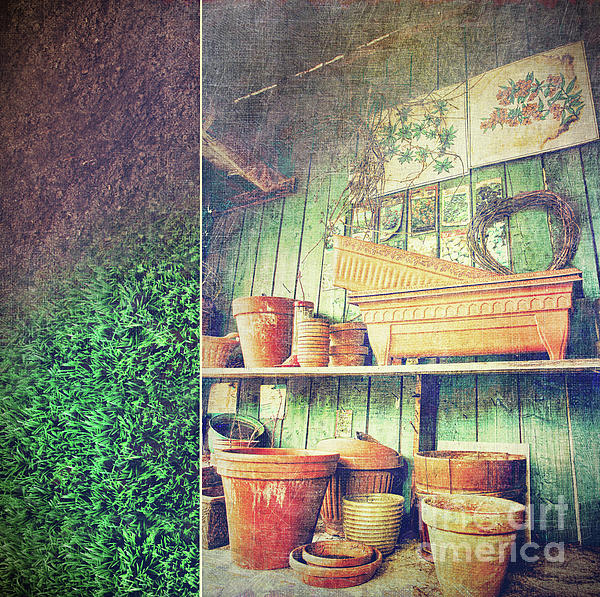 Basket Photograph - Lots Of Different Size Pots In The Shed by Sandra Cunningham