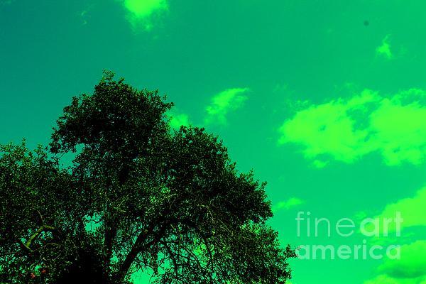 Magic Photograph - Magical Sky by Michael Grubb