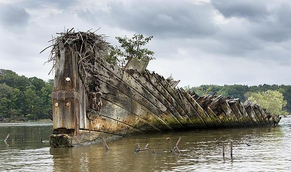 Mallows Photograph - Mallows Bay Ship Graveyard - Maryland by Brendan Reals