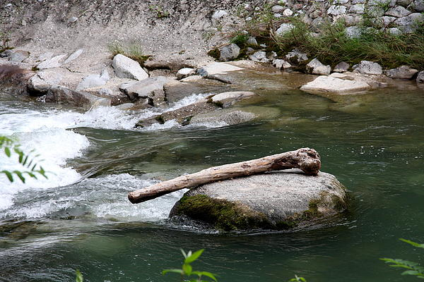 River Photograph - Mammoth Bone by Christiane Schulze Art And Photography